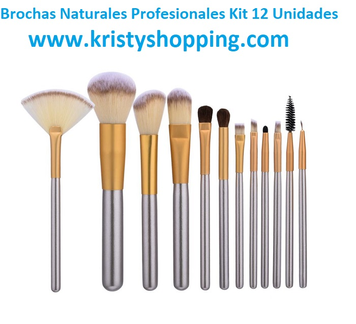Brush Makeup 12 kit